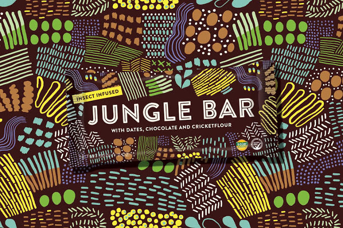 Jungle Bar: On A Mission To Normalize Edible Insects!