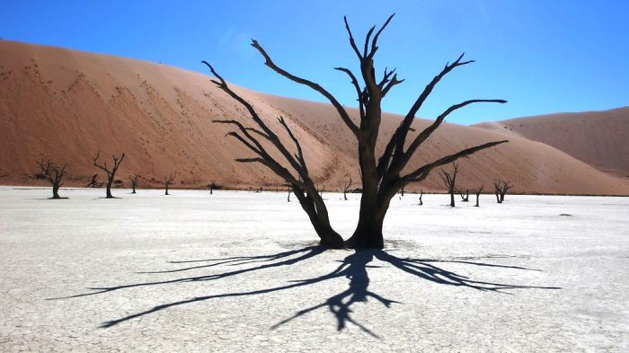 We Got Lost In Namibia