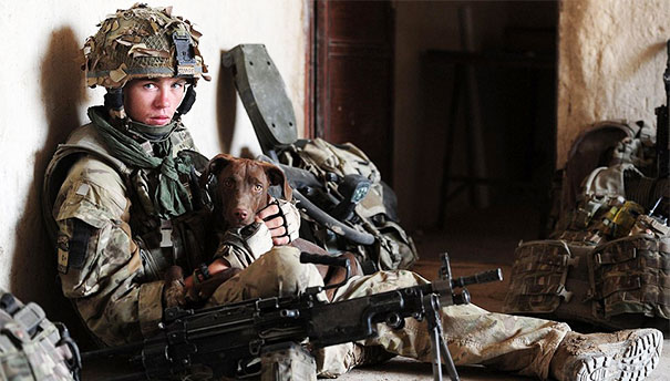 Soldier With His Pup