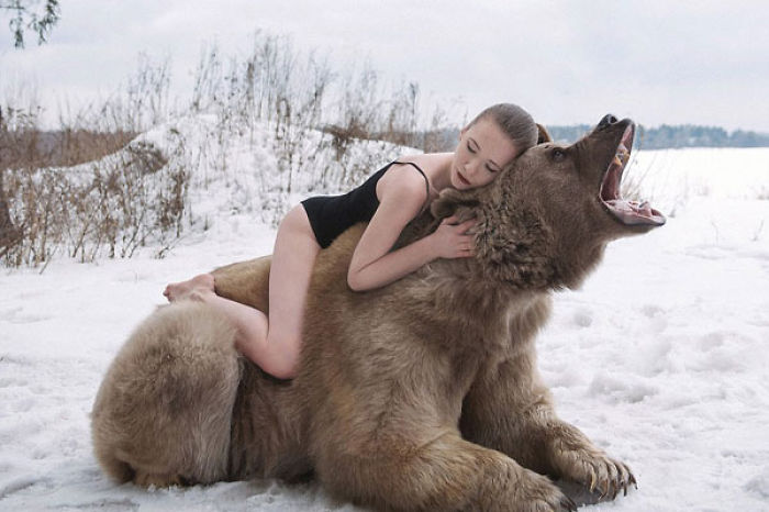 Photos Of Models With 650-pound Bear In A Snowy Forest Issue 688