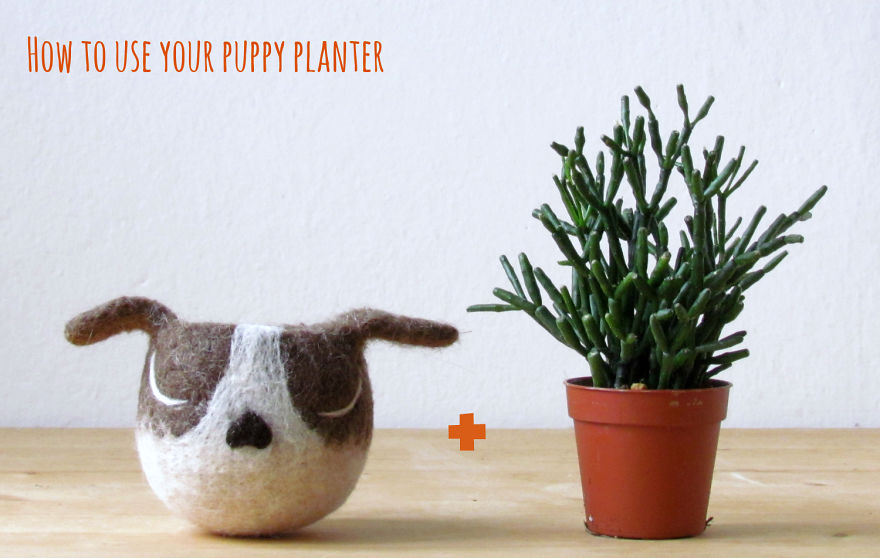 animalplanters turn your flower pots into cute animals. Black Bedroom Furniture Sets. Home Design Ideas