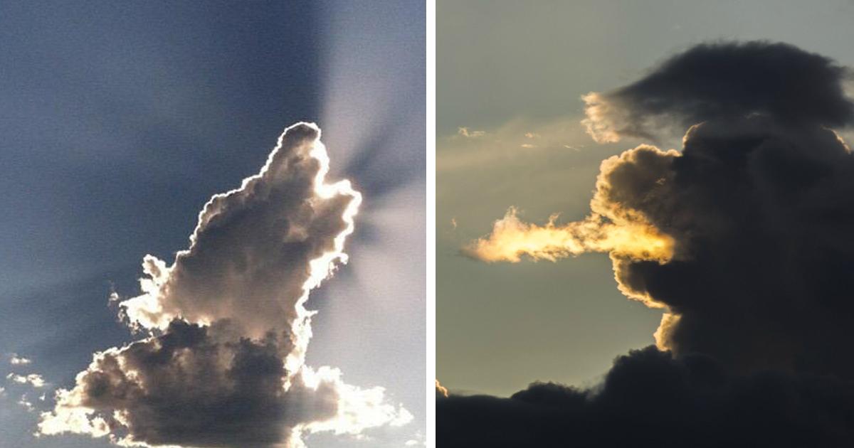 Sun Shaped Like A Dog