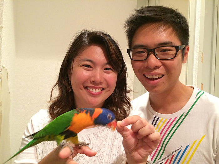 Cafe Where You Can Play With Parrots