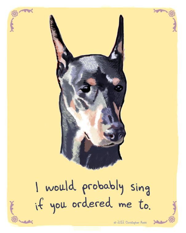Tiny Animal Confessions