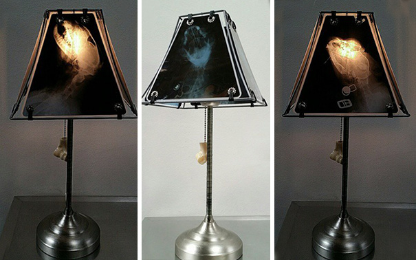 animal-x-ray-lamp-shade-veterinary-oncologist-spike-vain-1