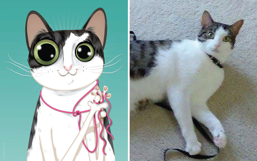 animated-pet-portraits-illustrations-chris-beetow2