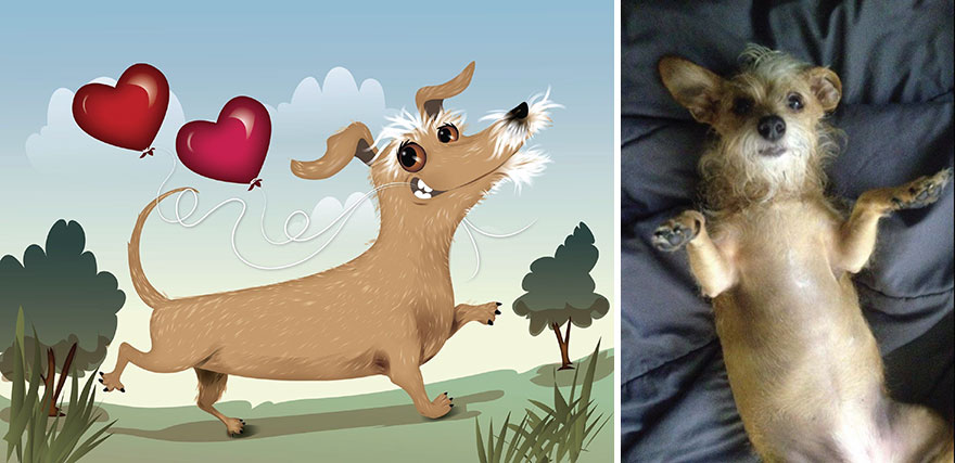 animated-pet-portraits-illustrations-chris-beetow6
