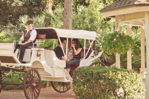 Princess Carriage Proposal