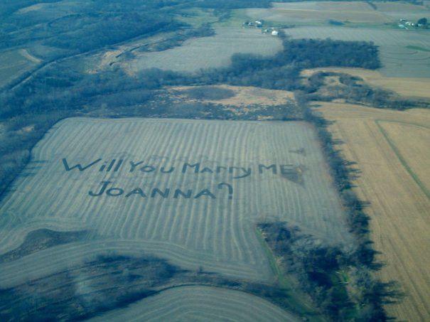 Proposal In The Fields