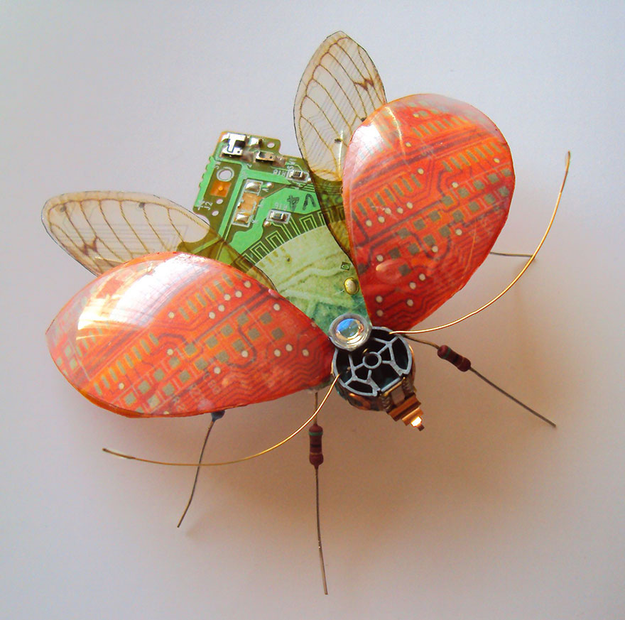 circuit-board-winged-insects-dew-leaf-julie-alice-chappell-25