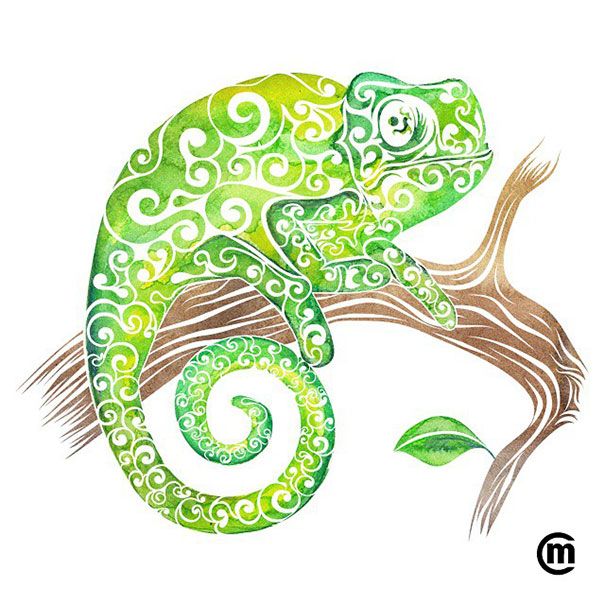 colorful-illustrations-swirly-animals-carolina-matthes-8