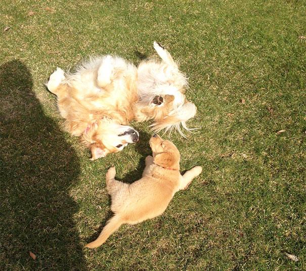 Kiska And Sunny