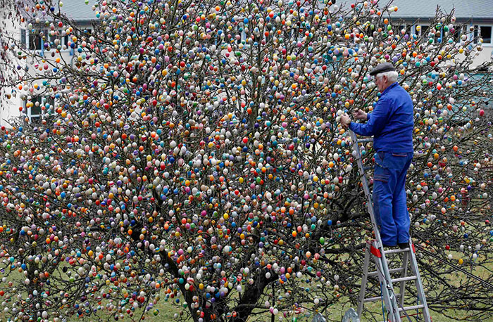 This German Family Spent More Than 2 Weeks Decorating A Tree With 10,000 Painted Eggs