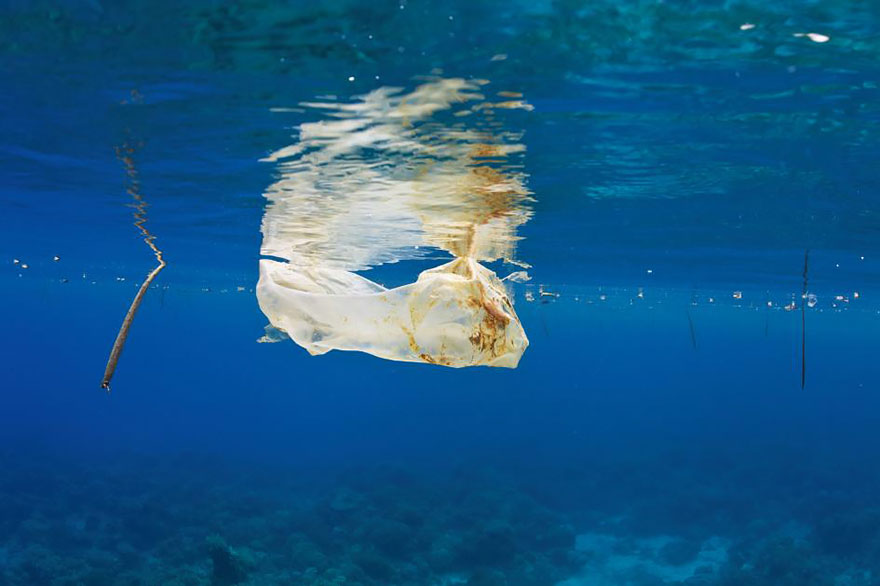 Plastic Bag Floats In The Sea Off The Philippines. Ocean Plastic Has Turned Up Literally Everywhere - In The Deep Sea And Buried In Arctic Ice
