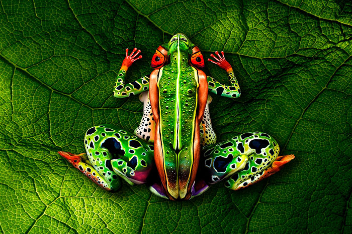 This Chameleon Is Actually Two Painted Women