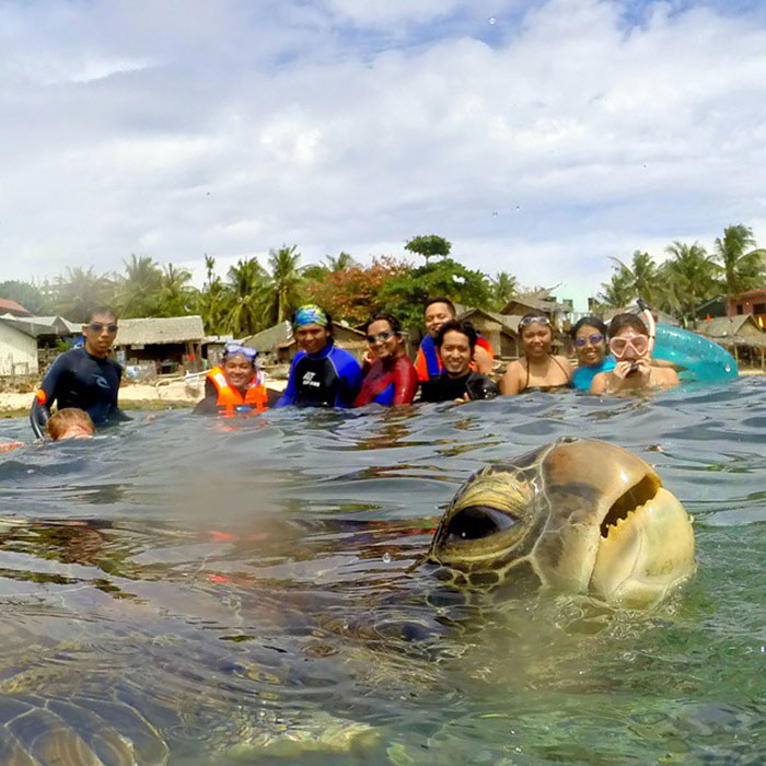 10+ Of The Funniest Animal Photobombs Ever