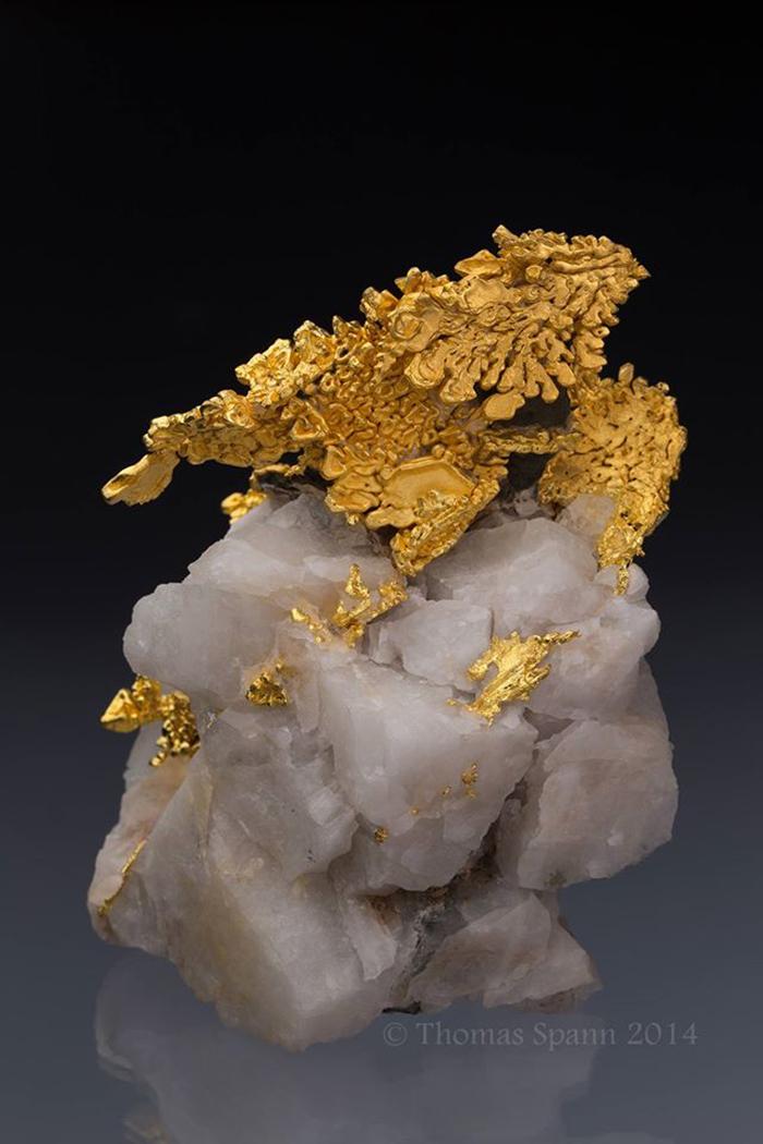 Gold (Dragon) On Quartz