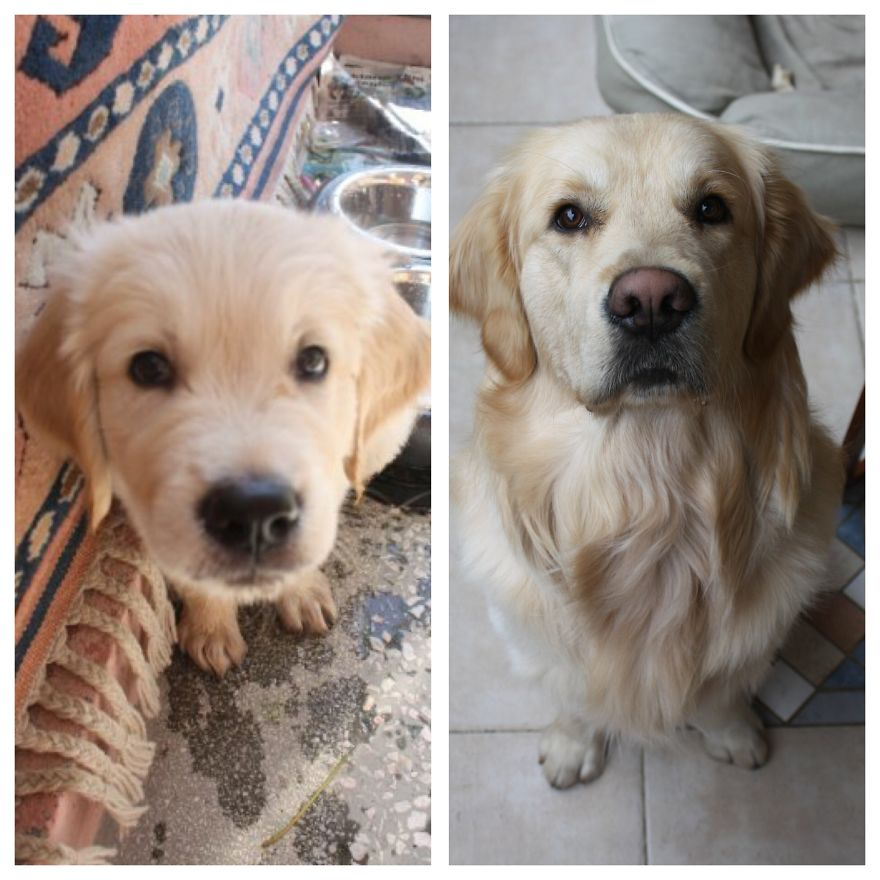 3months To 6years