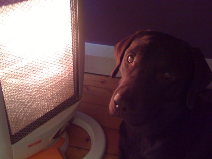 Millie And The Heater