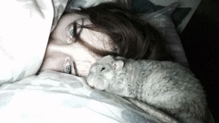 Bedtime Snugs