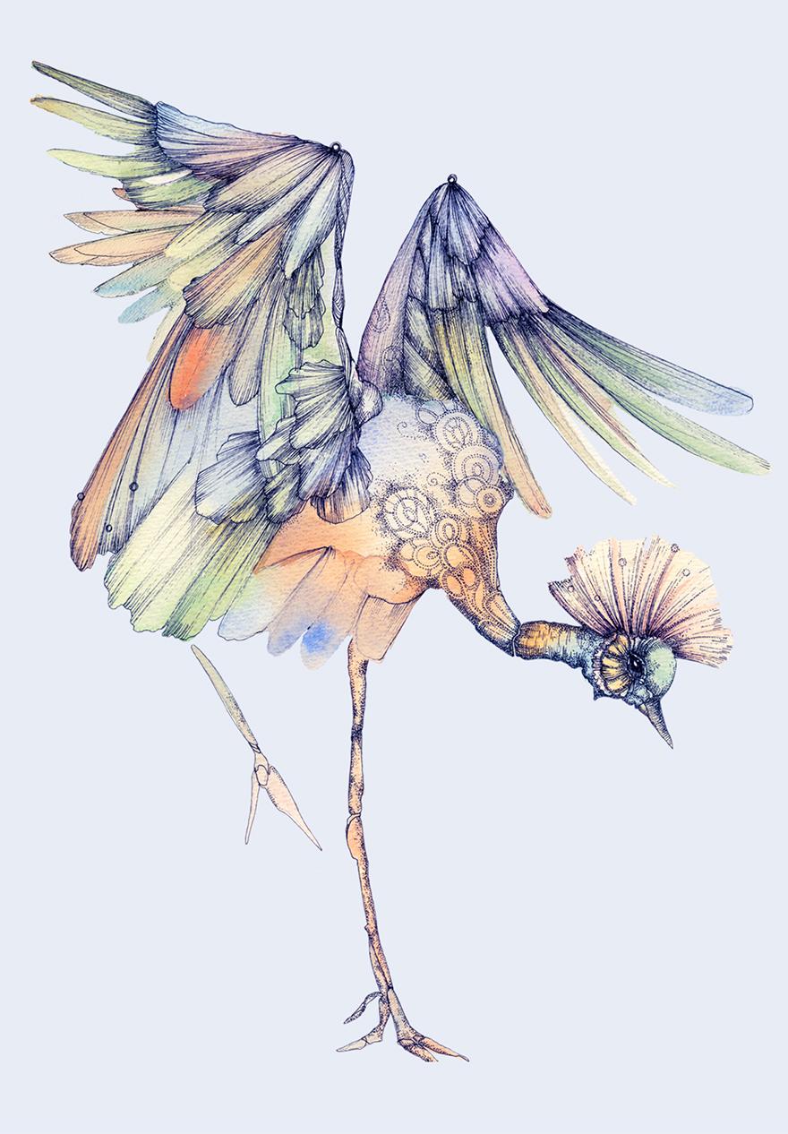 ink-watercolor-paintings-birds-juli-jah2