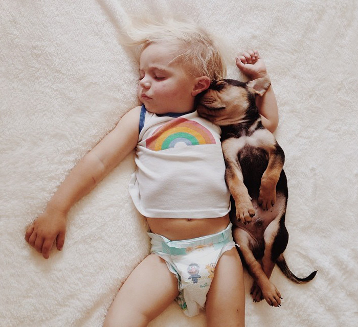 Napping Duo: Beau And His Puppy Theo