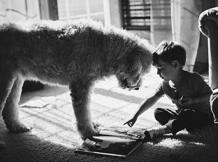 Big Dog, Little Boy