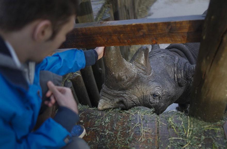 last-northern-white-rhinoceros-conservation-rangers-kenya-9