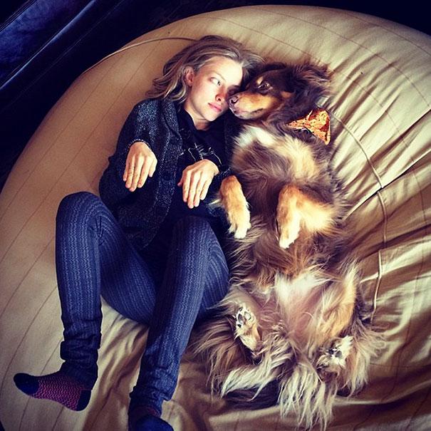 Like Owner Like Pet