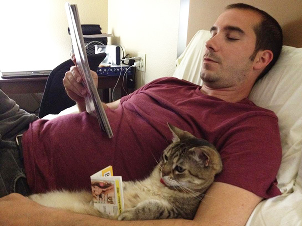 Just My Neighbor And His Cat Reading