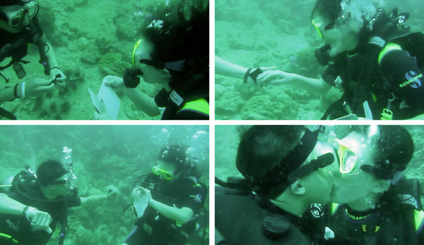 While Scuba Diving, He Pulled Out These White Boards With Writing On It And A Ring!
