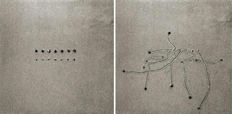 snail-drawing-tracks-daniel-ranalli-15
