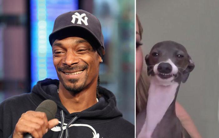 Snoop Doggy Dog