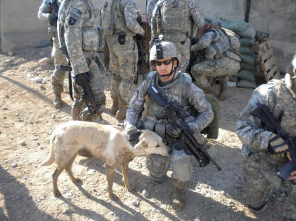 Soldier With His Deployment Dog