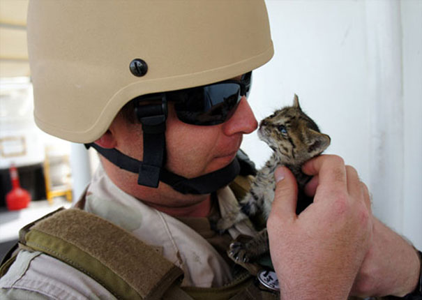Soldier With A Kitty