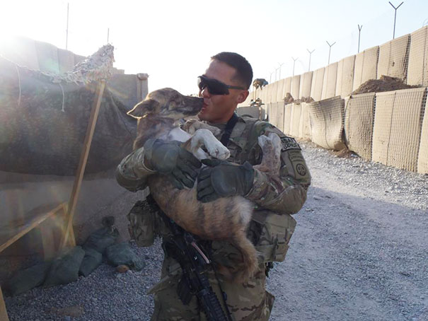 My Friend Rescuing A Dog In The Streets Of Afghanistan