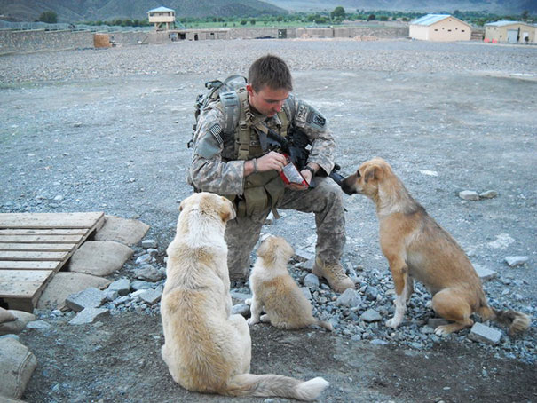 Soldier And His Best Friends