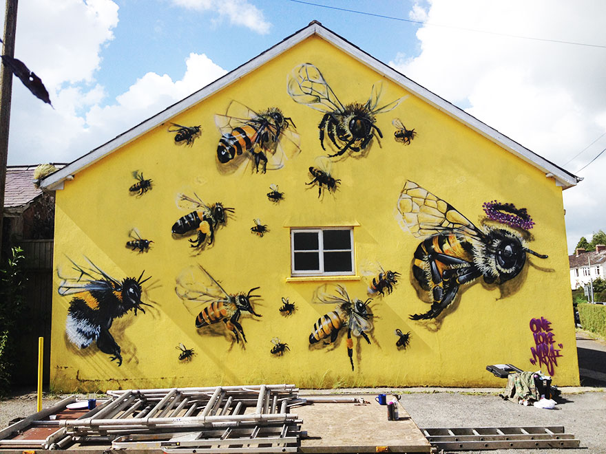 street-art-save-the-bees-louis-masai-19
