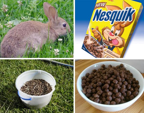 Nesquik Cereal Looks Like Rabbit Poop