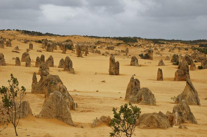 Pinnacles Desert, Western Australia