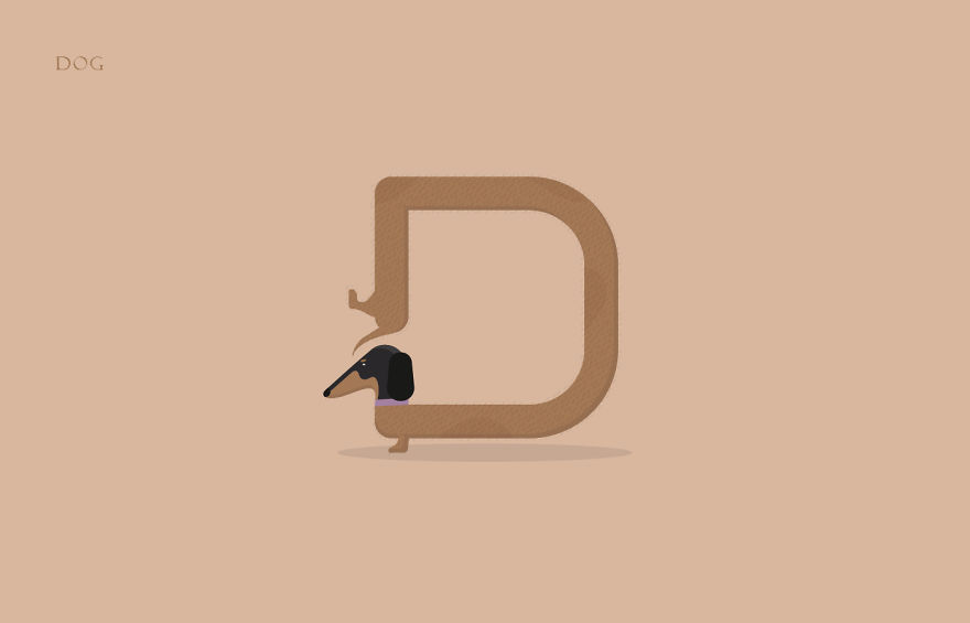 animal alphabet made from the first letters of their names | bored