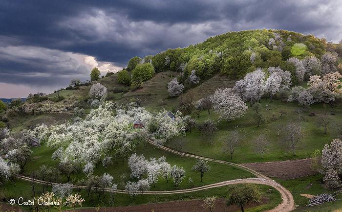 Spring In Maramures, Romania.