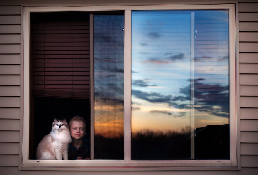 A Boy And His Cats: I Document The Bond Between My Boys And Their Cats