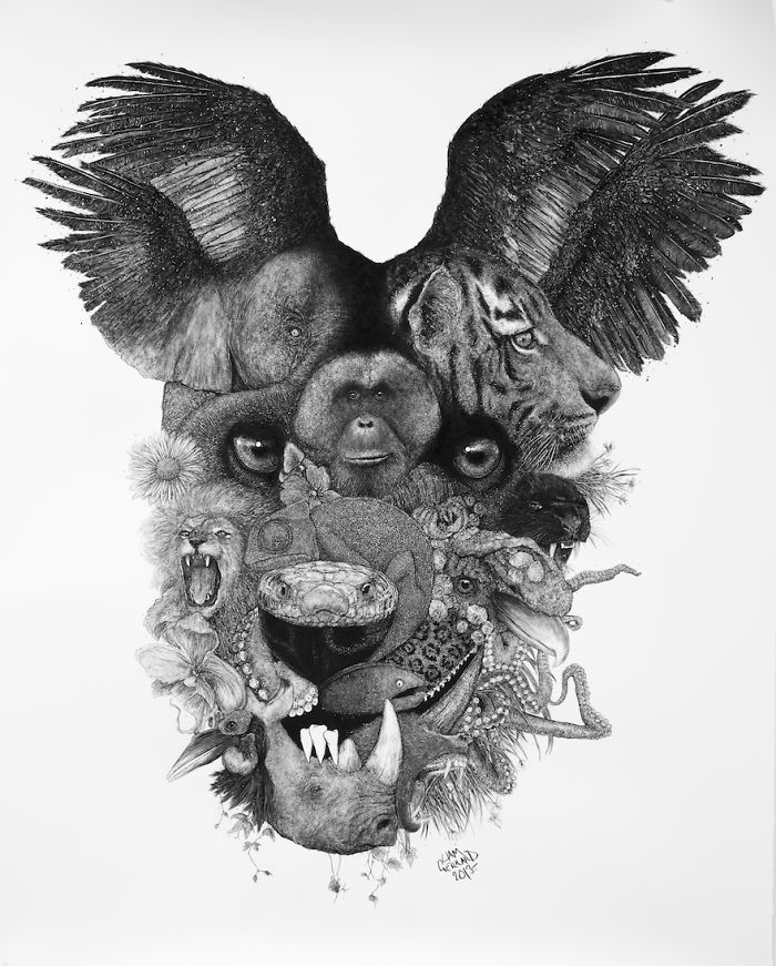 Animal Hybrids Drawn With Charcoal | Bored Panda