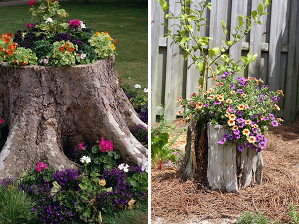 12+ Old Tree Stumps Turned Into Beautiful Flower Planters ...
