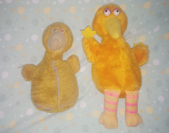 35 Year Old Big Bird Vs My Daughter's 35 Year Old Big Bird Gifted By My Mom