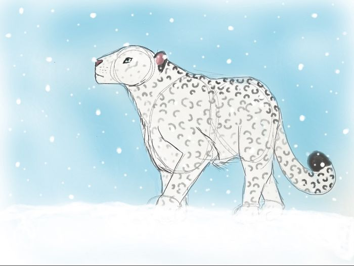 Snow Leopard By Leopardhorse56