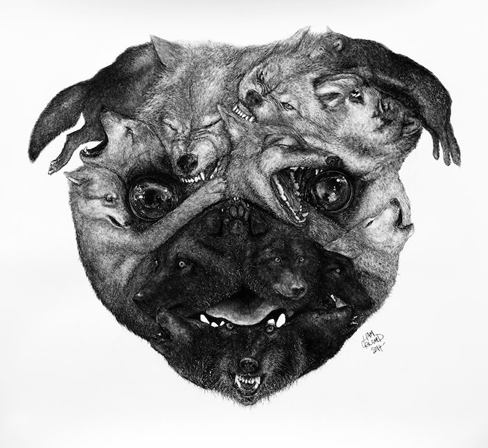 Animal Hybrids Drawn With Charcoal