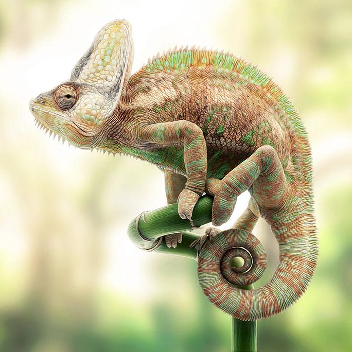 animals-collages-murat-sayginer-5