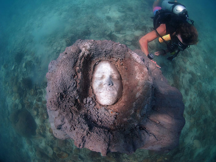 I Built A Sculpture And Left It 5 Meters Under The Ocean To Get Covered By Colorful Corals
